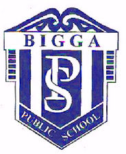 Bigga Public School