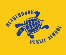 Blakebrook Public School