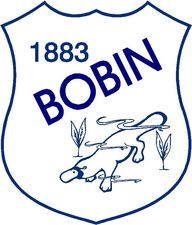 Bobin Public School - Education Directory