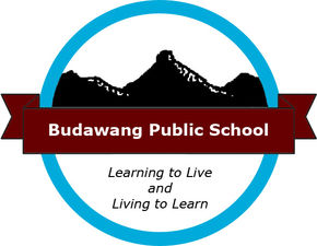 Budawang School - Education Directory