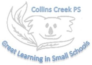 Collins Creek Public School - Education Directory