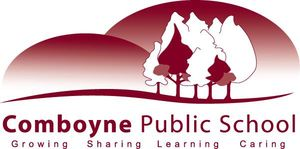 Comboyne Public School - Education Directory