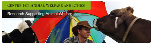 Centre for Animal Welfare and Ethics - Education Directory