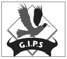 Glen Innes Public School - Education Directory