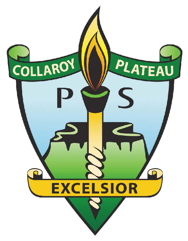 Collaroy Plateau Public School - Education Directory