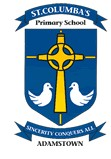 St Columba's Primary School Adamstown